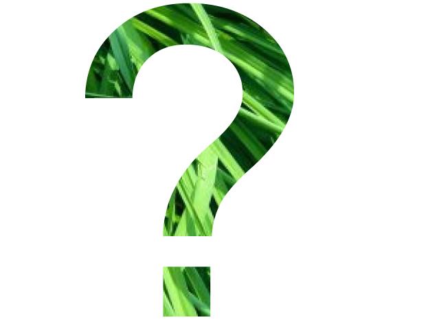 una interrogación con fondo de hierba