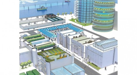 Si la agricultura urbana despegase, ¿como sería Boston?
