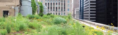 Nueva ponencia en el Máster Universitario en Rehabilitación Arquitectónica (MARA)