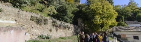 Iniciativa de huerto urbano en Granada de Granada en Transición